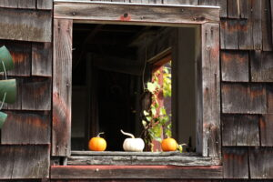 Pratt Farm window