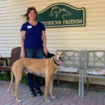 Greyhound Friends open house