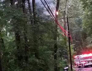 North Mill tree fire