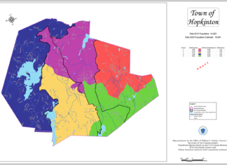 Precinct proposal map