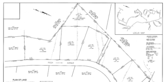 Fitch Avenue proposal
